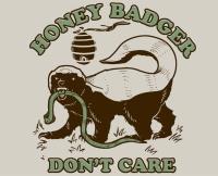 DT04-honey-badger-dont-care