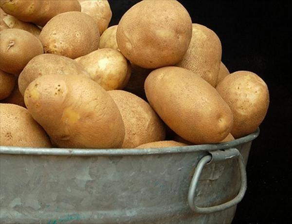 potato__cvnzvvu
