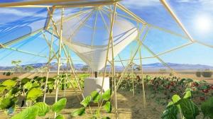 гидропоника пустыня помидоры огурцы вода конденсация