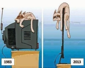кот телевизор капитализм эволюция развитие