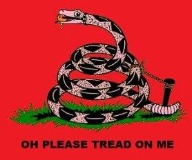 социалисты флаг змея юмор прикол