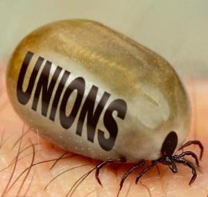 профсоюзы кровопийцы клоп ладонь рука юмор насекомое