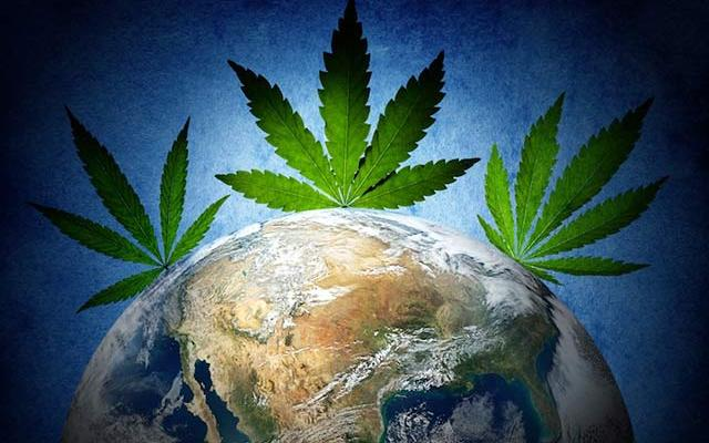 marijuana-global-use-popular