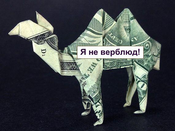camel-money
