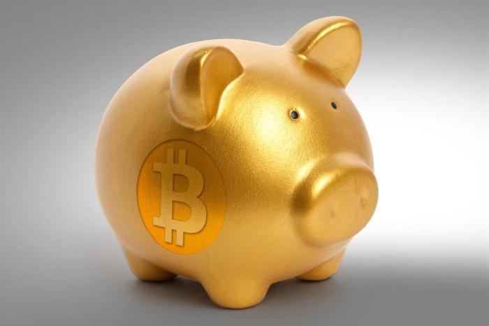 bitcoin-piggy-bank-2-bitnovosti