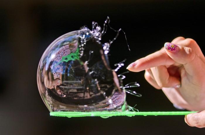 Как нам предотвратить еще один Биткойн-пузырь