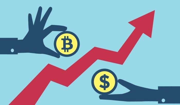 Новозеландская биржа BitPrime продемонстрировала беспрецедентный рост менее чем за 3 месяца